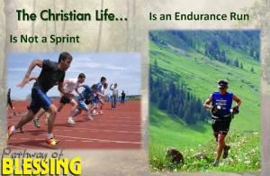 endurance-run