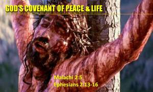 covenant-of-life-and-peace