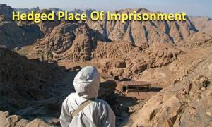 hedged-place-of-imprisonment