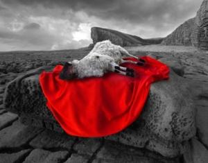 lamb-that-was_slain