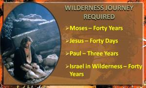 we-must-experience-the-wilderness