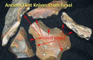 Flint Knives for Circumcision