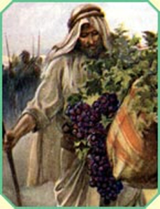 Caleb-Grapes of eschol