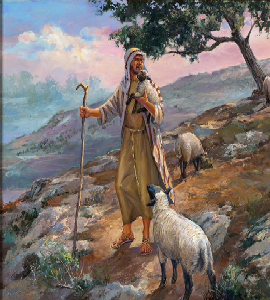 shepherds care for the flock