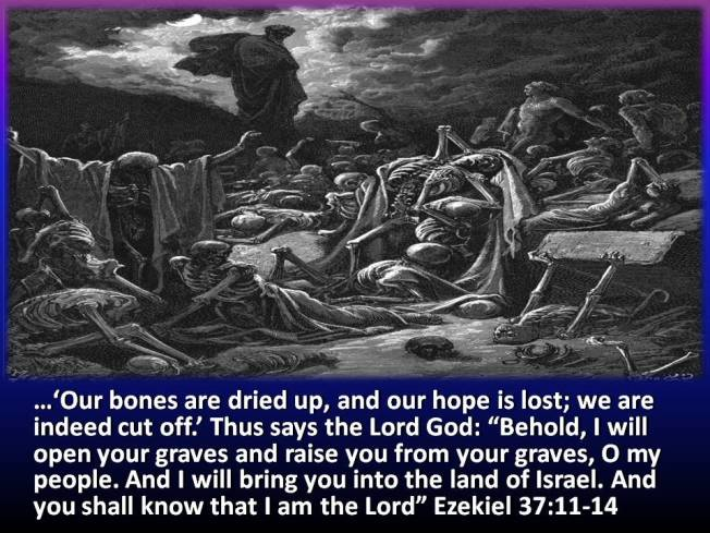 Image result for the dry bones of ezekiel