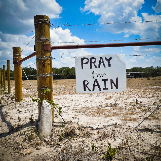 Pray for Rain? What does God think? | Loving the Word with