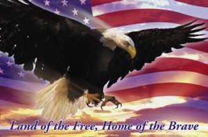 LAND OF THE FREE HOME OF THE BRAVE_2532
